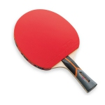 Butterfly Stayer 3000 Table Tennis Paddle