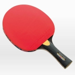 Butterfly Stayer 1500 Table Tennis Paddle